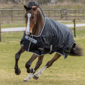 Bucas winterdeken Black turnout 150gr